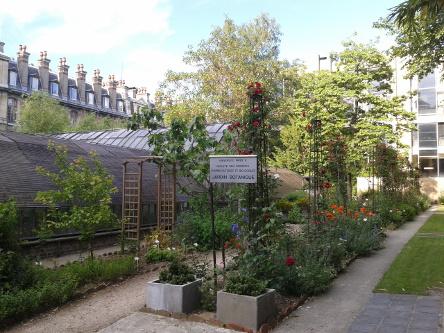 Le jardin botanique de la rue d 39 assas paris u s s for Jardin botanique paris