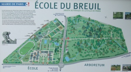 arboretum de l 39 cole du breuil part1 u s s botany bay. Black Bedroom Furniture Sets. Home Design Ideas