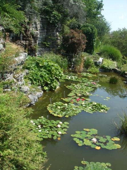 Le jardin botanique de lausanne u s s botany bay for Le jardin geneve